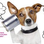 Comunicazione canina
