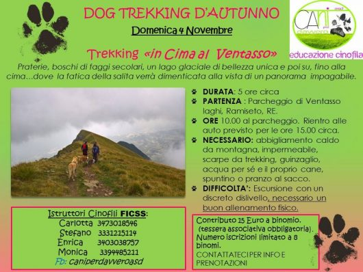 Dog Trekking D'autunno